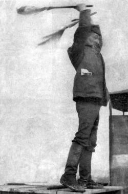Arseny Borrero - Wikipedia