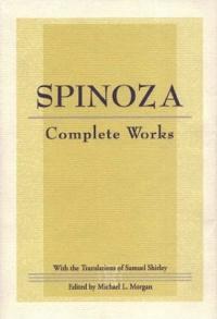 Pdf the spinoza problem
